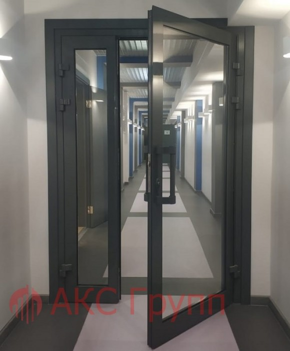 Противопожарные двери EIWS 30 lвупольные